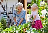 Ältere Frau und Mädchen gießen Pflanzen im Garten