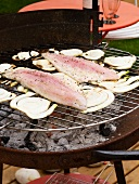 Sea bass with fennel on the BBQ