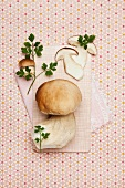 Porcini mushroom - still life