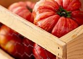 Heirloom Tomatoes in a Crate
