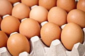 Braune Eier im Eierkarton
