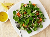 Pea shoot salad with tomatoes and onions