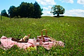 A picnic in a meadow of wild flowers