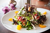 Asian Noodle Salad with Mixed Greens, Cashews and Mandarin Oranges