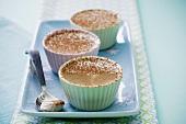 Vanilla mousse with cocoa powder (a child's dessert)