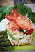 Maine Lobster, Tomato and Avocado Salad on Asparagus Spears