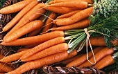 Fresh carrots, bunched, in a basket