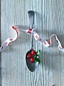 Cranberries auf Löffel mit Schleife
