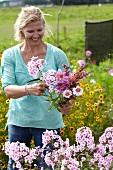 Frau pflückt Gartenblumen für einen Blumenstrauss