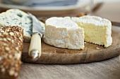 Weichkäse, Blauschimmelkäse, Käsemesser und Kornbrötchen auf Holzteller