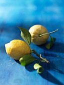 Lemons with leaves on a blue-painted wood surface