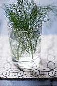 Frischer Dill im Wasserglas