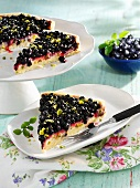 Blueberry cake with coconut cream