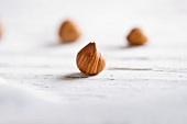 A few hazelnuts