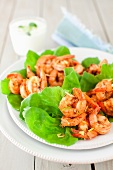 Spicy Garlic and Ginger Shrimp on Lettuce Leaves
