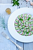 Cucumber and Radish Salad with Fennel and Garlic on a White Plate