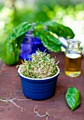 Ramekin Full of Sprouts; Fresh Basil
