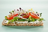A crispbread with cucumbers, tomatoes and sprouts