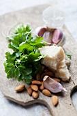 Ingredients for coriander pesto