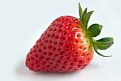 Eine Erdbeere vor weißem Hintergrund
