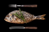 A roasted gilt-head bream with rosemary