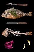 Stillleben mit Fisch und Fischskelett