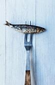 A meat fork skewering a barbecued sardine