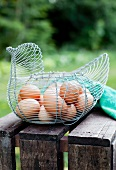Fresh Brown and White Eggs in a Wire Basket