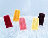 Assorted Fruit Popsicles Stuck in Crushed Ice