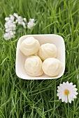 White chocolate truffles in artificial grass