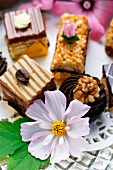 Petits fours with white cosmos flowers