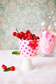 Redcurrants in a spotted cup