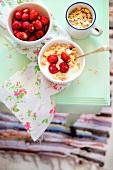 Muesli with wild strawberries and porridge oats
