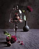 Schokoladentrüffeln unter Glashaube