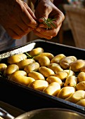 Potatoes being sprinkled with rosemary