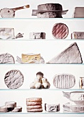 Lots of different types of cheese on glass shelves