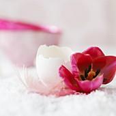 Pinkfarbene Tulpe, Eierschale und Feder als Osterdeko