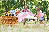 Family picnicking in a park