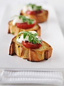 Crostini capresi (toasted slices of bread with mozzarella and tomatoes)