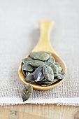 Pumpkin seeds on a wooden spoon