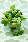 Fresh basil in a bowl on a patterned surface