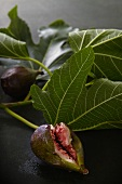 Fresh figs with leaves