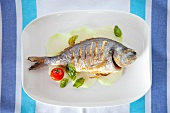 Grilled tilapia with cherry tomatoes and basil