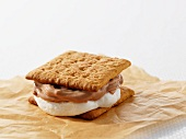 Smore (biscuit sandwich with marshmallows and chocolate, USA)