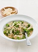 Risotto with broad beans and parmesan