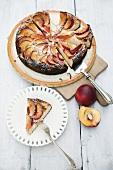 Sour cream cake with nectarines