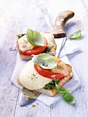 Toast caprese (toast with mozzarella, tomatoes and basil)