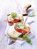 Toast caprese (toast with mozzarella, tomatoes and basil)
