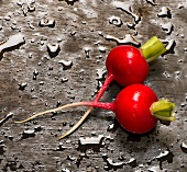 Two radishes on wet wood