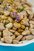 Fat beans with honey and mustard dressing with lavender flowers